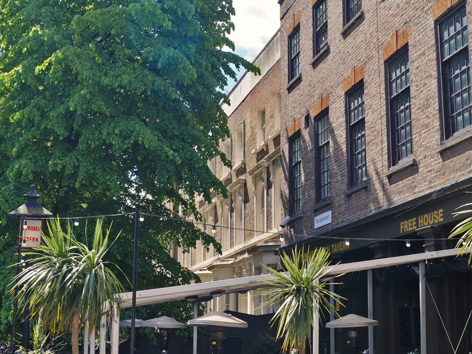 Have a refreshing pint in our wonderful beer garden under palm trees